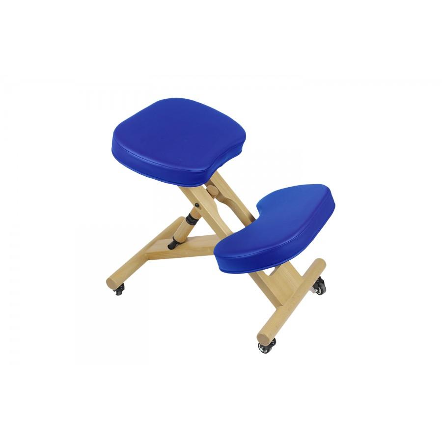 sedia ergonomica blu, con struttura in legno